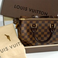Louis Vuitton Speedy Damier PM