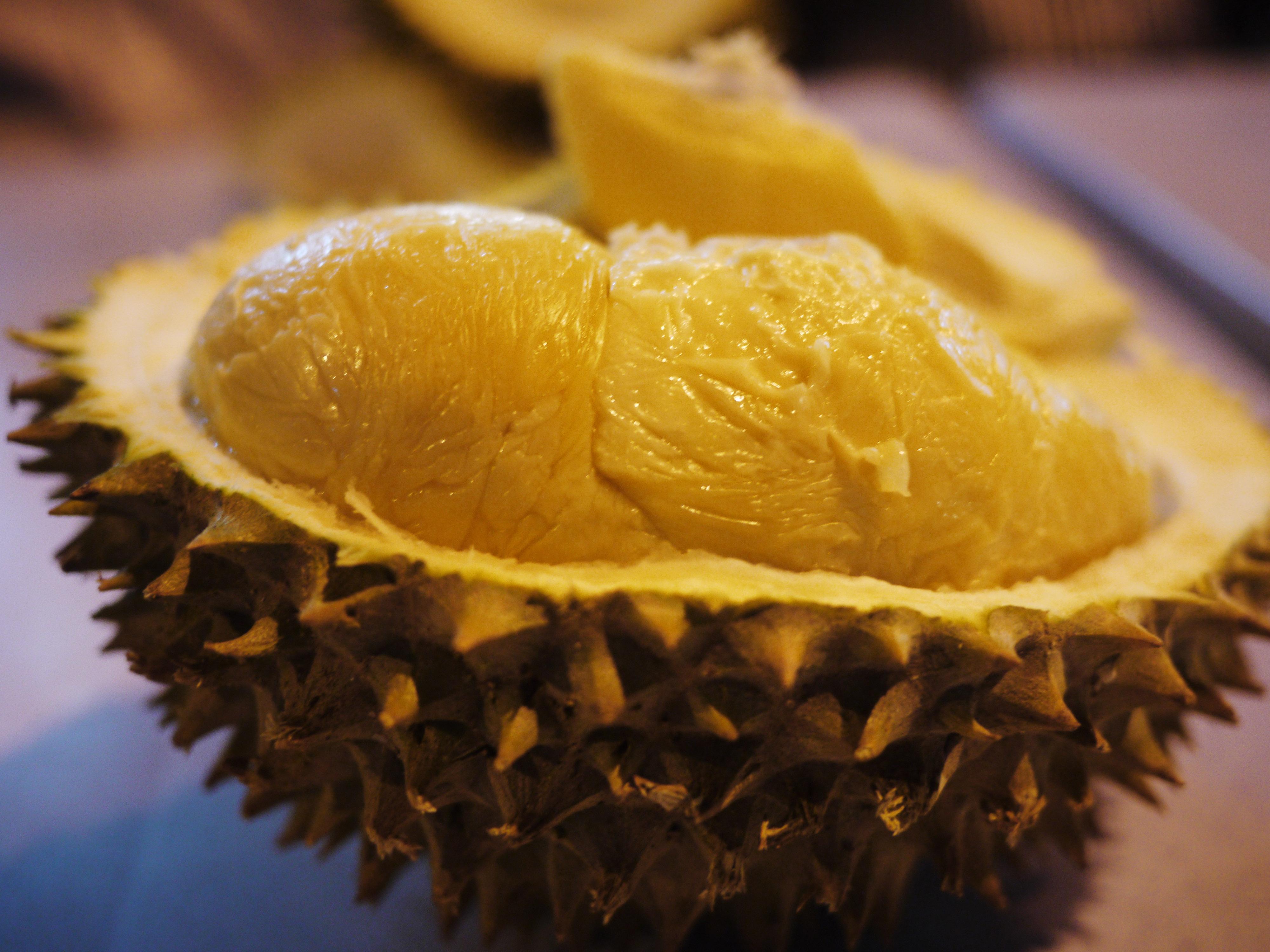 Durian-Kaya-Akan-Manfaat